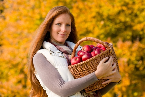 Apples In 1 Basket